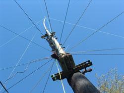 80m GP, 20m high, 12 radials